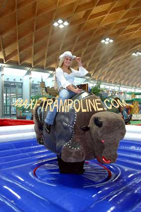 Aero Bungy Maxi Trampoline Com Bungee Trampoline